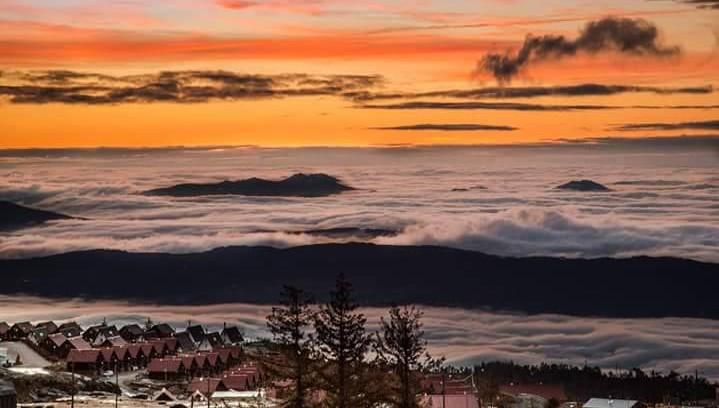 neblina matinal MF