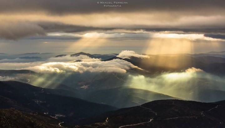 Nevoeiro Manuel Ferreira